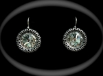 Picture of Swarovski earrings and ring
